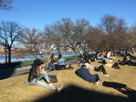 BU Beach: students took advantage of the record warmth by relaxing or doing work in the sunshine.